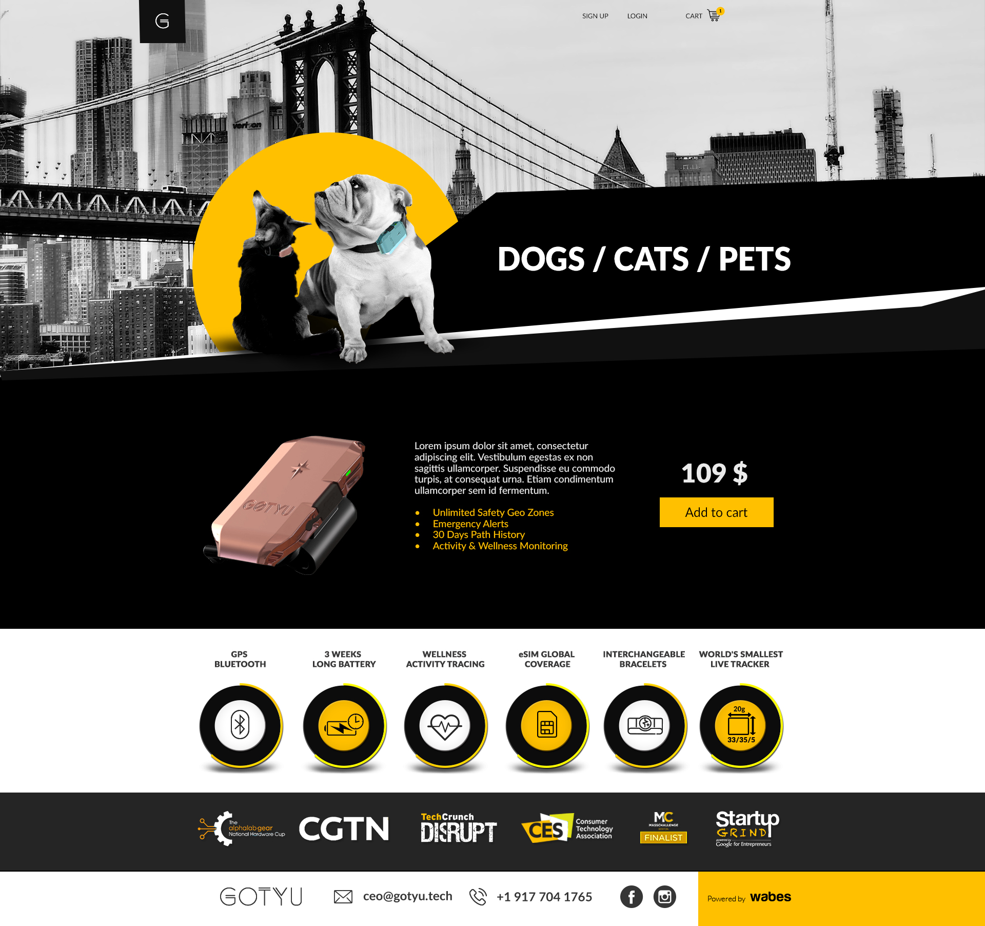 1 Dogs Cats Pets - Gotyu