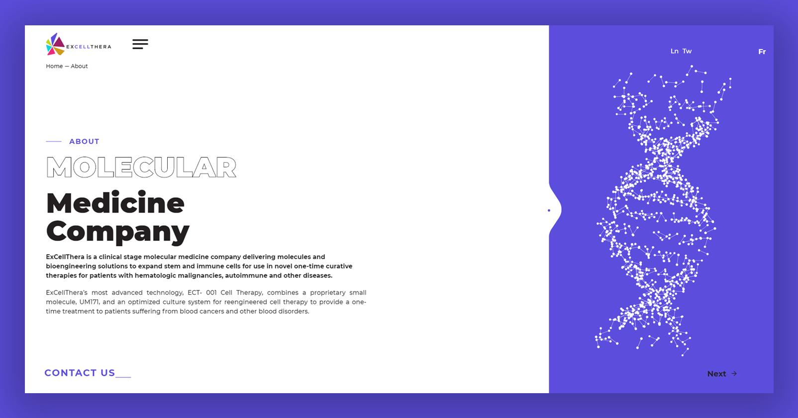 Website Design  third - Excellthera